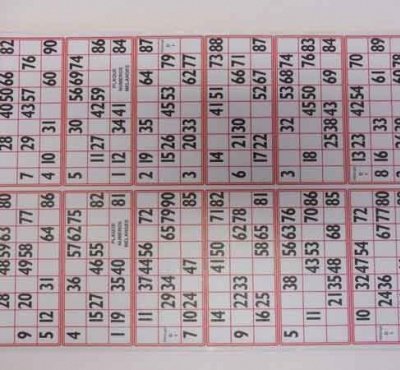 Cartons loto les belles plaques loto cartons loto rigide bingoloto - Grille de bingo a imprimer gratuit ...
